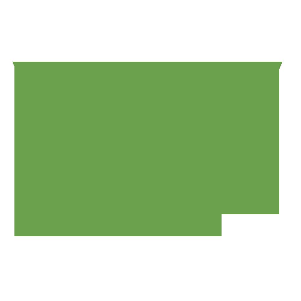 Website Vidya