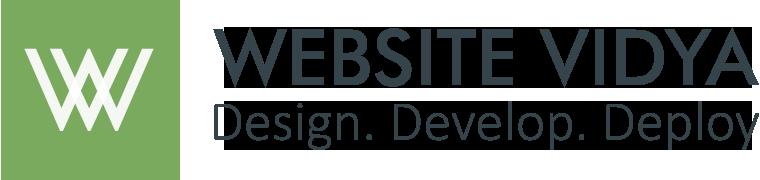 website vidya logo